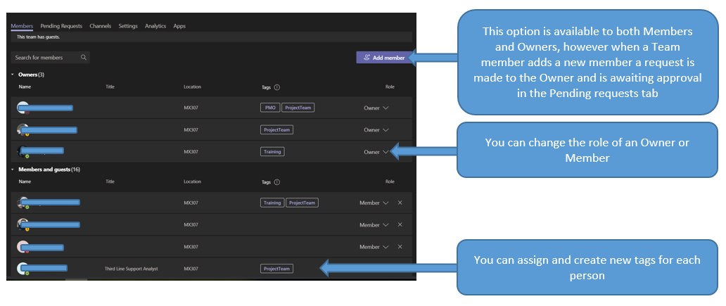 An annotated list of members options in Teams