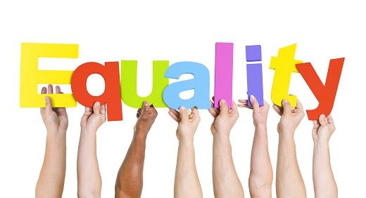 Equality checks Button