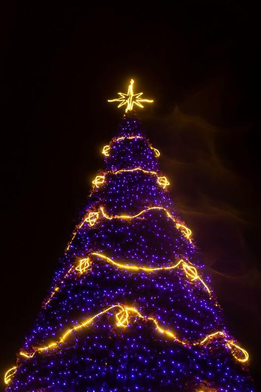 xmas tree star pexels 920
